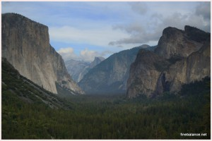 Yosemite National Park2