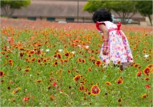 TexasWildflowers-16
